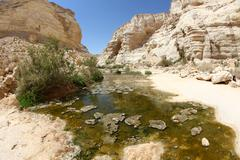 The wilderness of Ein Avdat in the Negev district in southern Israel - stock photo