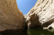 The wilderness of Ein Avdat in the Negev district in southern Israel Stock Photos
