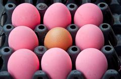 Brown and pink egg Stock Photos