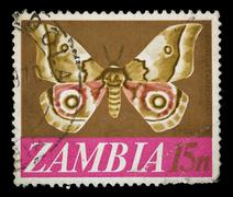 zambia butterfly stamp - stock photo