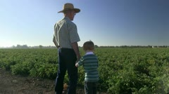 farmer, farming - stock footage