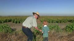 Farmer, farming redhead Stock Footage