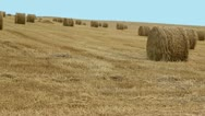 Stock Video Footage of haystack