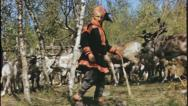 Stock Video Footage of NOMADIC Herd Laplander Sami Lapland Norway 1950s Vintage Film Home Movie 3636