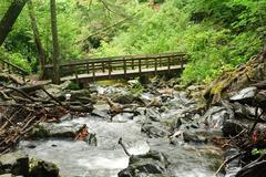 mountain stream bridge - stock photo
