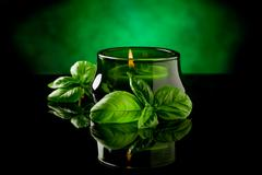 Candle with basil flavour Stock Photos