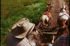 POV from stagecoach, horses, drivers, Yellowstone National Park Stock Footage