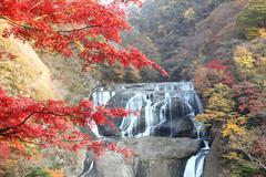 Fukuroda Falls in Japan - stock photo