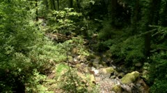 Scenic Mountain Stream - 720 Stock Footage