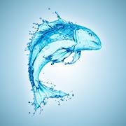 water fish splash isolated on white background - stock photo