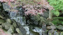 Waterfall with Laced Leaf Maple Trees and Ferns in Zen Garden - stock footage