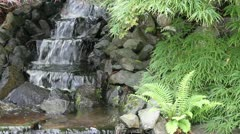 Waterfall in Backyard Zen Garden with Maple Trees and Ferns Stock Footage