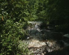 Top of Amicalola Falls 01 - PAL Stock Footage
