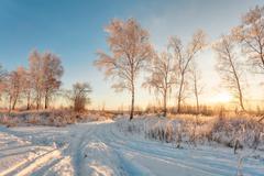 sunset in winter field - stock photo