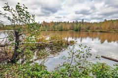 Autumnal lake Stock Photos