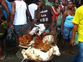 Goats and chickens sold Mercado Sao Joaquim, SALVADOR DE BAHIA, BRAZIL Stock Photos