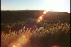 Desert plateau scene, sunset, backlighting, Mesa Verde National Park, Colorado Stock Footage