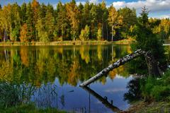 autumnal lake near the forest - stock photo