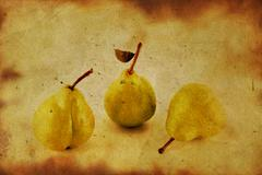 fresh apple and pears close-up in grunge - stock photo