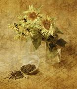 Still life with sunflowers Stock Photos