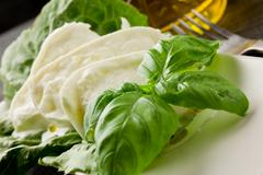Buffalo mozzarella with lettuce and basil Stock Photos