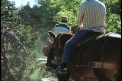 The Grand Canyon mule ride, mule train on Bright Angel Trail, zoom wide on turn Stock Footage