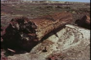 Stock Video Footage of Petrified Forest National Park, wide shot of stone log