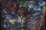 Stock Video Footage of Petrified Forest National Park, close up of end of stone log, agate colors,