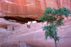 canyon de chelly white house ruins - stock photo