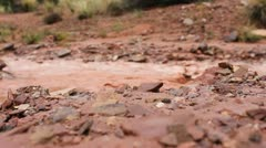 Muddy river in desert country. Stock Footage