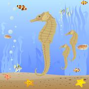 seahorse - stock illustration