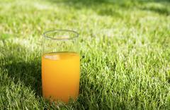 fresh orange juice - stock photo