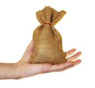 small money bag - stock photo