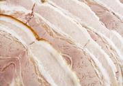 Stock Photo of sliced bacon