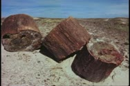 Stock Video Footage of Petrified Forest National Park, medium shot of three log sections