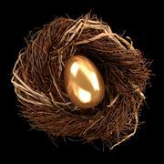 Nest egg Stock Photos