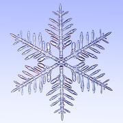 Microscopic snowflake Stock Illustration