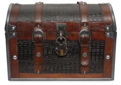 Treasure chest isolated Stock Photos