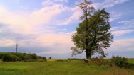 Stock Video Footage of Kansas Tree West Clouds Timelapse