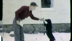 DOG BEGS FOR FOOD Trick Pet Owner 1952 Vintage Old Film Home Movie 3852 Stock Footage
