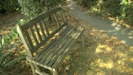 Stock Video Footage of Empty Wooden Bench