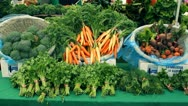 Organic Carrots Stock Footage