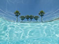 Underwater palm tree pool view abstract. Stock Photos