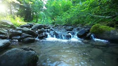 Stock Video Footage of pure fresh water waterfall in forest