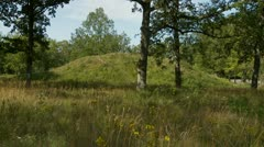 Viking age burial mound at Borre Stock Footage