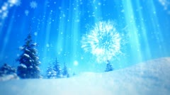 Christmas and New Year tree 7 Stock Footage