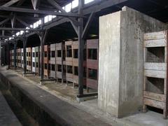 Auschwitz Baracks Bunks - stock photo