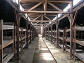 Auschwitz Third Reich Stock Photos