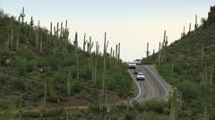 Saguaro National Park Road Stock Footage