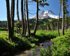 Mt Hood and Stream - stock photo